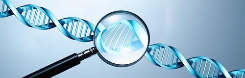 Tìm kiếm trung tâm xét nghiệm ADN tại Hà Nội đảm bảo kết quả chính xác được nhiều người quan tâm