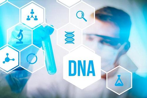Xét nghiệm ADN tại Locus ADN, khách hàng sẽ nhận được kết quả chính xác nhất